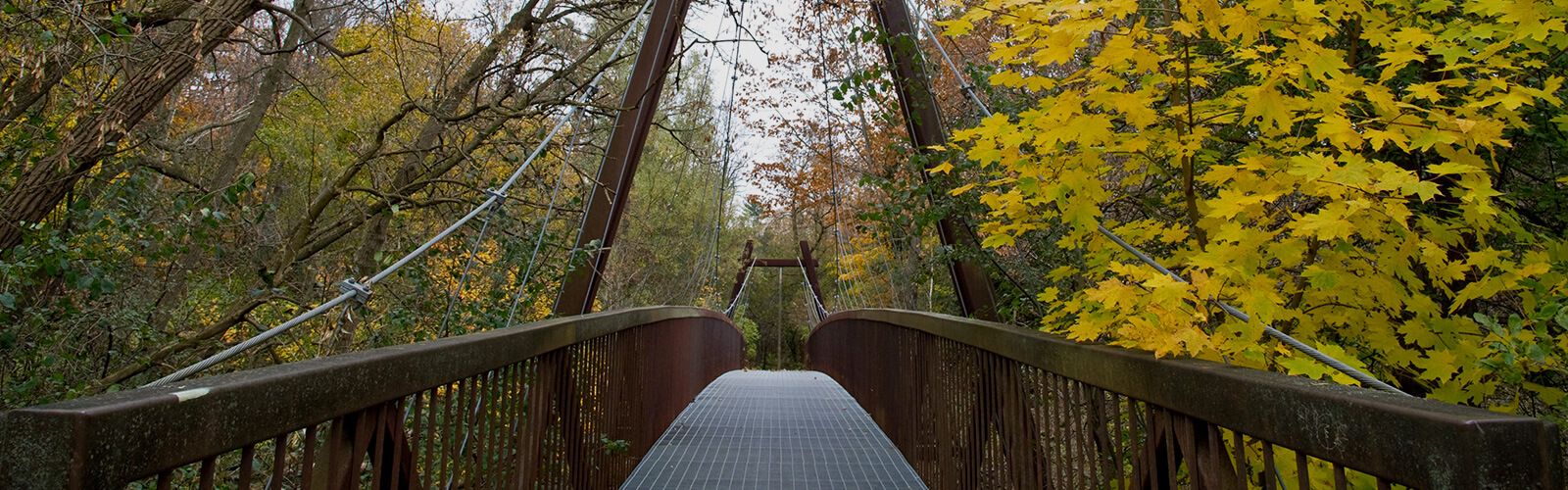 Suspension pedestrian bridge leads from the foreground into the background, surrounded by lush forest fall trees on either side.