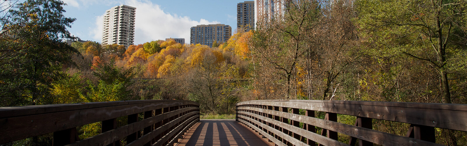 A wood pedestrian bridge crossed from the foreground toward a forested area with fall trees. Several apartment buildings in the background look down on the valley.