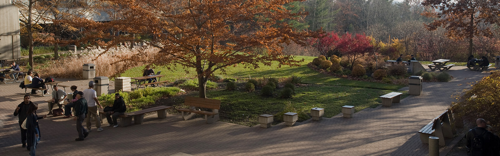 A cobblestone area with people sitting at picnic tables and park benches. Lush fall trees and bushes surround the area.