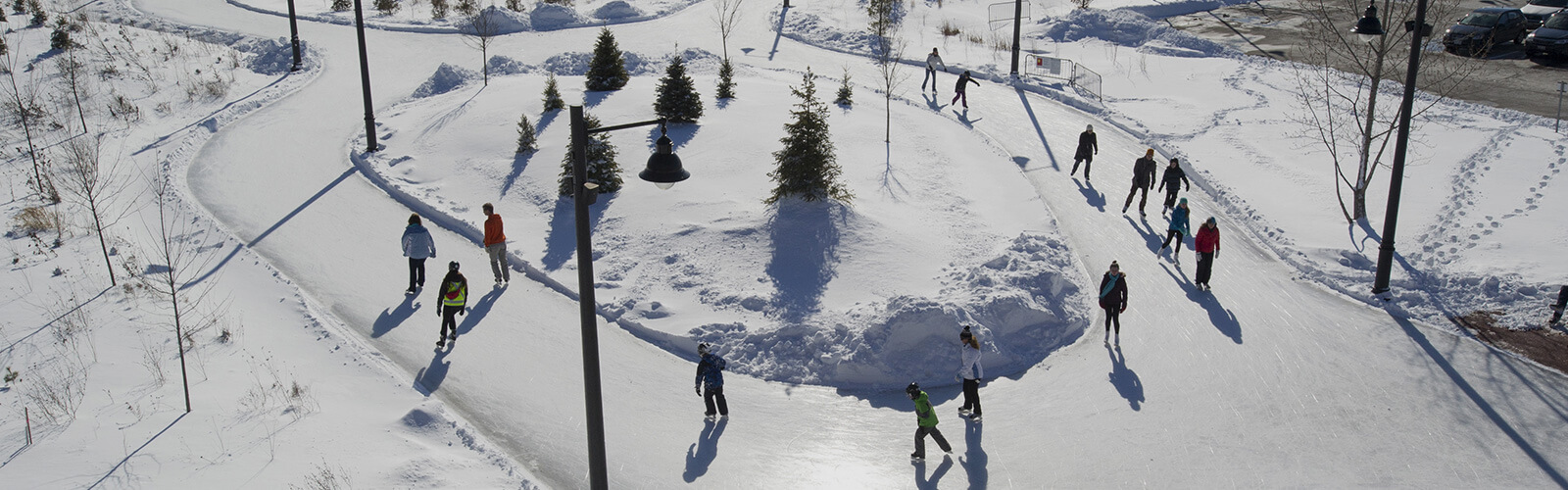 A winter scene with people ice skating along a figure-8 skating trail. Snow covers the ground. Several small evergreen trees sit in the middle of the lower half of the skating trail.
